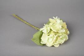 x520mi Hortensia artificiel vert H33cm