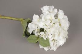 x522mi Hortensia artificiel blanc H50cm