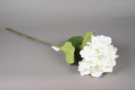 x523mi Hortensia artificiel blanc H70cm
