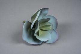 x530mi Succulente kalanchoé artificielle H25cm