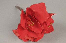 x531di Artificial red amaryllis H30cm