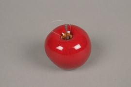 x536di Boîte de 24 pommes artificielles rouge D6.5cm