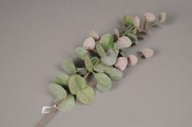 x549jp Branche d'eucalyptus artificiel H88cm