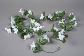 x569mi White artificial stephanotis garland L170cm