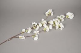 x576jp Branche de cerisier artificiel blanc H135cm