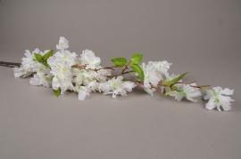 x577mi White artificial cherry blossom branch H127cm