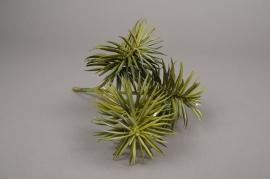 x598jp Artificial green succulent plant H24cm