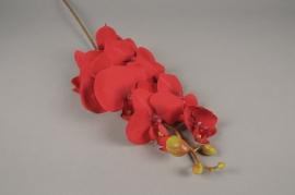x599mi Branche de phalaenopsis artificiel rouge H80cm