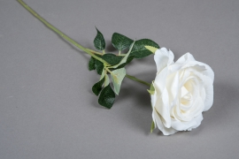 x638mi Artificial white rose H54cm
