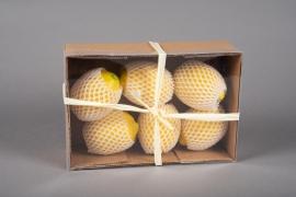 x642jp Boîte de 6 citrons jaunes artificiels D10cm