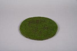 x648mi Artificial green foamed plat D30cm