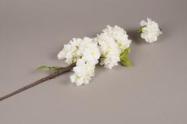 x650jp Artificial white prunus branch H94cm