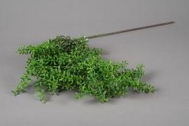 x654jp Chute de succulente artificielle verte H70cm