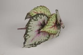 x657di Bégonia artificiel vert et rose H25cm