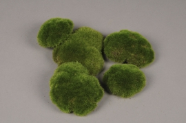 x675jp Pack of 5 green pebbles moss