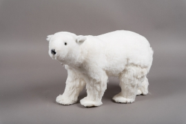 X716DQ White bear H26cm