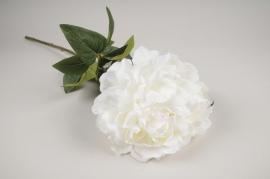 x750jp Pivoine artificielle blanc H70cm