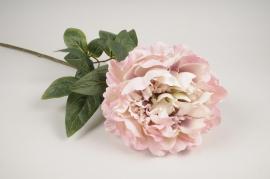 x753jp Pivoine artificielle vieux rose H70cm