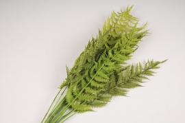 x763jp Artificial green nephralepis branch H70cm