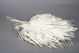x778mi Feuilles séchées blanchies H68cm