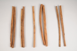 x801mi Bag of cinnamon sticks H40cm