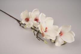 x817mi Magnolia artificiel blanc H90cm