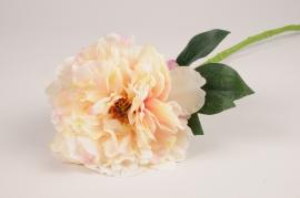 x835mi Pivoine artificielle crème et rose H58cm