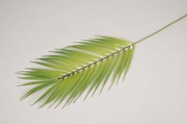 x844mi Artificial green palm H75cm