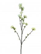 x887nn Artificial Prunus branch white H130cm