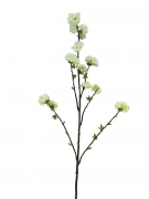 x887nn Branche de prunus artificiel crème H130cm