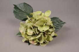 x948nn Hortensia artificiel vert H48cm