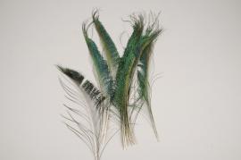 x959wg Sachet de 10 plumes de paon naturelles H37cm
