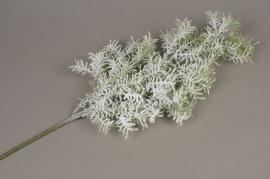 xx13ee Branch of artficial snowed asparagus H60cm