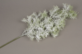 xx13ee Branche d'asparagus artificielle enneigée H60cm