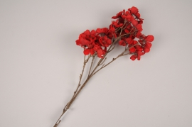 xx55di Red artificial prunus branch H79cm